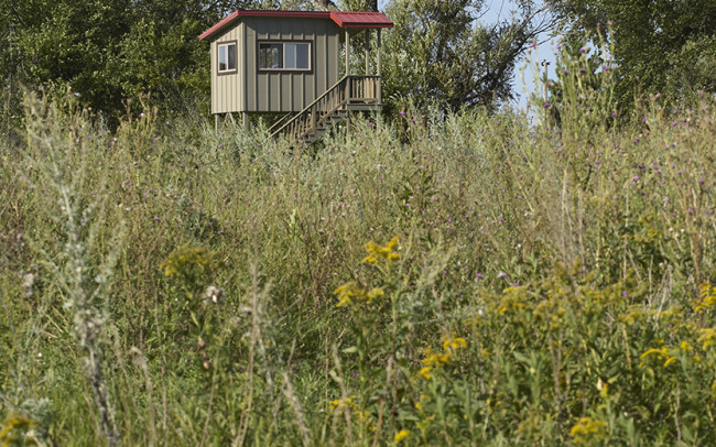 Otter Tail Hunting Lodge Deer Stand